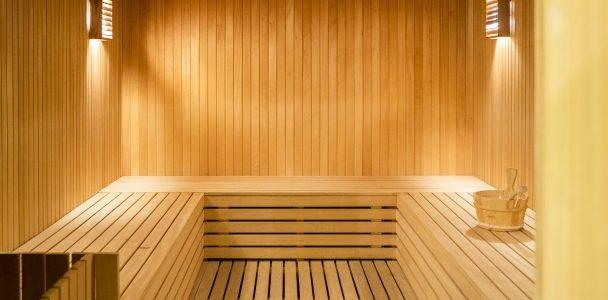 game habitat devhub sauna